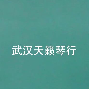 武汉天籁琴行