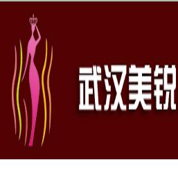 武汉美锐咨询有限公司