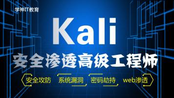 Kali安全渗透+Web白帽子高级工程师+黑客攻防-初级课-学神IT