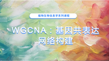 WGCNA:基因共表达网络构建