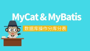 Mybatis源码及数据库分库分表