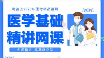 安徽考德上医疗卫生医学基础知识笔试课程