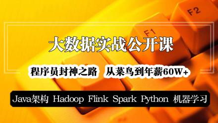 Java架构/大数据/Hadoop/Flink/Spark/Python/机器学习【大讲台】