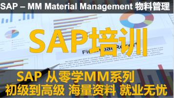 SAP 从零学MM系列