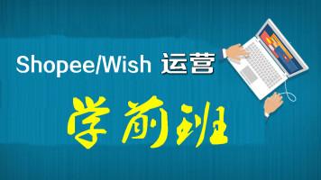 跨境电商wish运营虾皮运营(Shopee)与lazada玩转东南亚电商实战