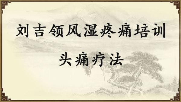 刘吉领风湿疼痛培训——头痛