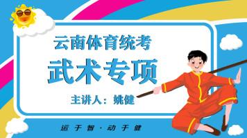 云南省统考武术专项素质讲解(正压腿、竖叉、握杆转肩)