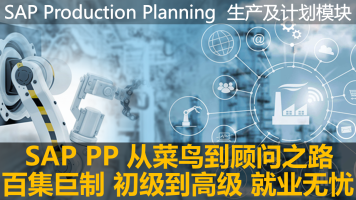 SAP 机构内部PP顾问培训课程
