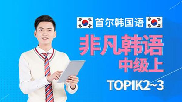 首尔韩国语非凡系列中级上(TOPIK2~TOPIK3)