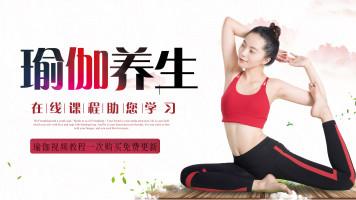 瑜伽系列课程