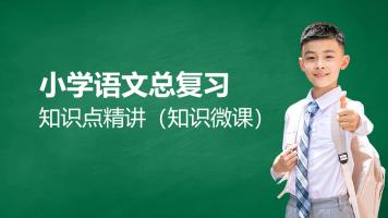 小学语文总复习知识点精讲(知识微课)