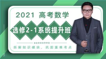 2020高中数学选修2-1系统班/讲义+答疑+督学