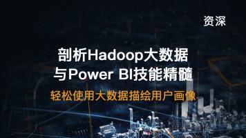 【资深】Hadoop大数据与PowerBI精髓,轻松使用大数据描绘用户画像