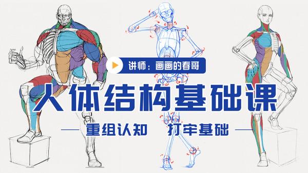 人体结构基础课