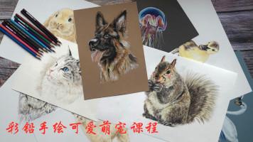 彩铅手绘可爱萌宠课程/素描/水彩/手绘/美术/彩铅动物