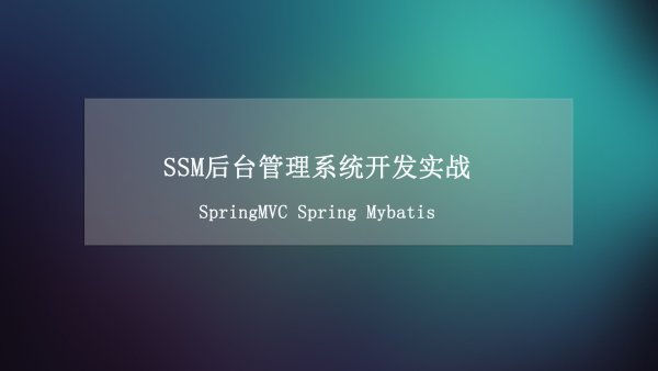 SSM后台管理系统开发实战