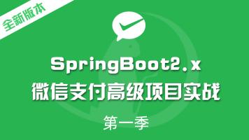 全新版本录制SpringBoot2.x整合微信支付高级项目实战