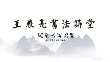 王展亮书法讲堂——硬笔书写启蒙(按全日制部编版标准讲学)