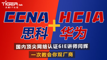 【太阁闫辉】思科CCNA+华为HCIA融合课程,一次学会两!