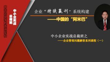 企业管理问题解决系列(一)2(80集)
