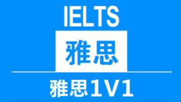 在线领航计划-A计划 总监级老师1V1直播课