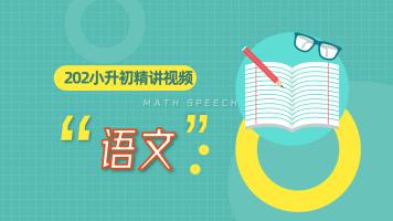 2020小升初语文练习册视频讲解