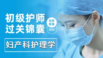 2020年初级护师-妇产科护理学-过关锦囊轻松过四科
