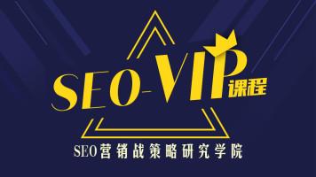 SEO到底咋做?搜索引擎优化总监实战VIP课堂【透析2021最新案例】
