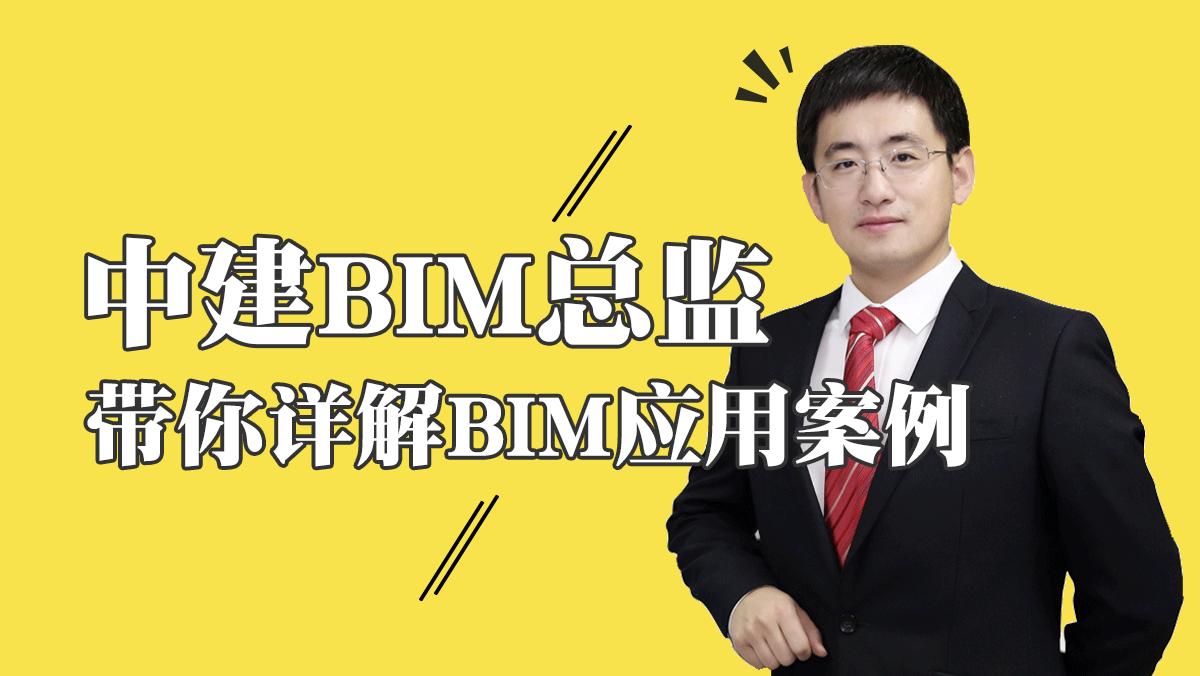 BIM应用-中建BIM总监带你详解BIM应用案例