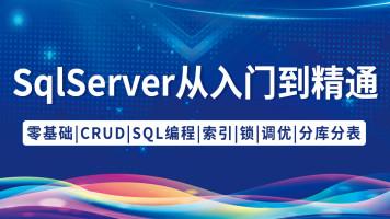 SQL Server从入门到精通【升职加薪,只争朝夕!】
