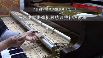 三角钢琴触感调整初级教程(平台钢琴机械调整系列之一)