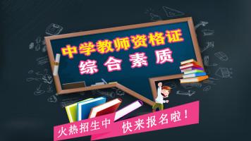 综合素质(中学教师资格证笔试)