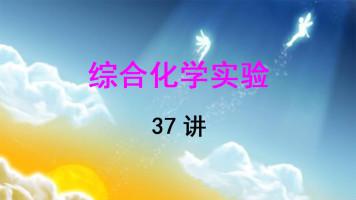 南京大学 综合化学实验 章文伟 37讲