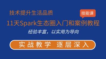 11天Spark生态圈入门和案例教程