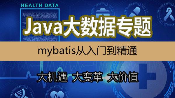 mybatis持久化/Java大数据/Java并发/分布式集群部署