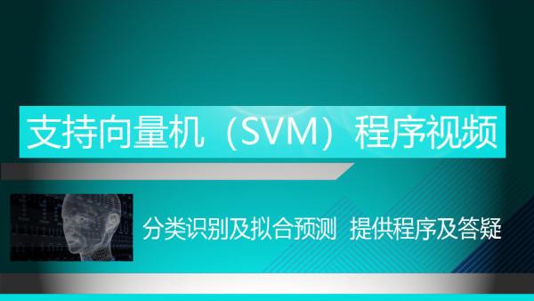 支持向量机(SVM)与MATLAB程序视频及多分类识别拟合预测