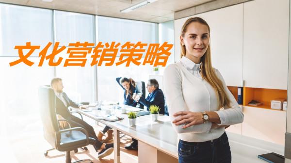 文化营销策略-龙顺城