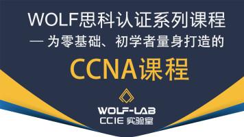 WOLF实验室CCNA全课程-为零基础、初学者量身打造CCNA/CCNP/CCIE
