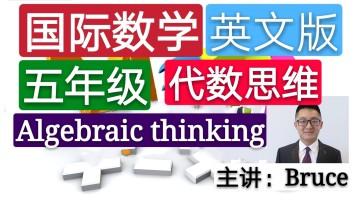 【精品课】五年级小学国际英文数学(代数思维)