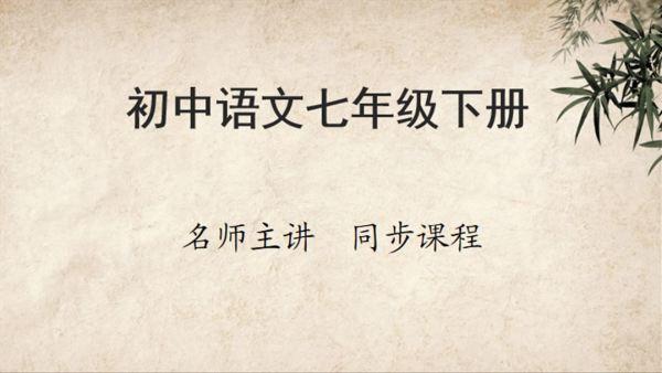 初中语文七年级下册同步课程