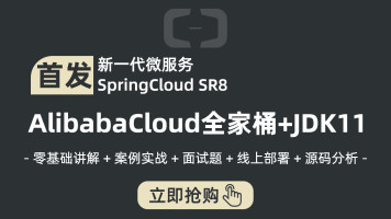 20年AlibabaCloud教程实战JDK11/Spring Boot/Cloud/Docker/java