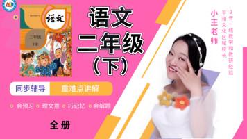 小学语文二年级(下)~校内同辅~部编版