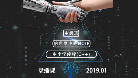 2019信息学奥赛NOIP中级班录播课程
