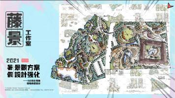 2021暑假方案强化课程-3小时小场地绿地快题设计