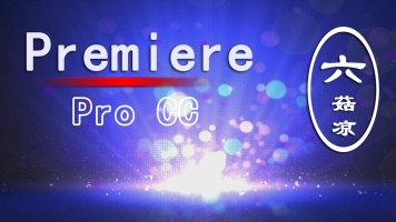 Premiere Pro CC实战教学PR入门至高手系统培训课程