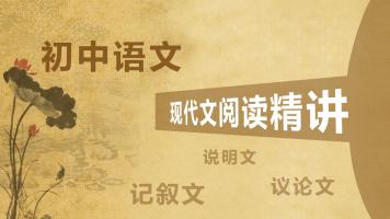 初一初二初三初中语文现代文阅读精讲