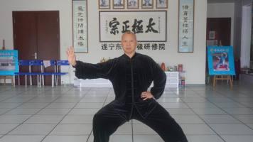 2018郭光陈式12式公益分享