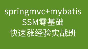 Springmvc+Mybatis项目实战ssm(零基础到商用实战)