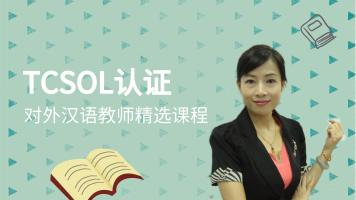 国际对外汉语教师考试:初中高精读课教学