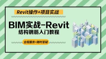 BIM实战-Revit结构钢筋入门教程【启程学院】